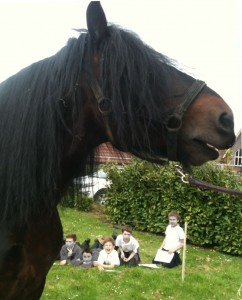 War Horse at Marden Primary School